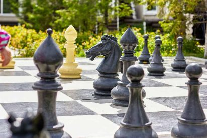 chess and nature